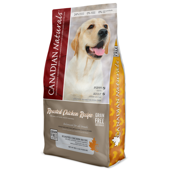 Grain Free Roasted Chicken Recipe for Dogs